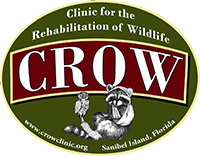 Clinic for the Rehabilitation of Wildlife logo